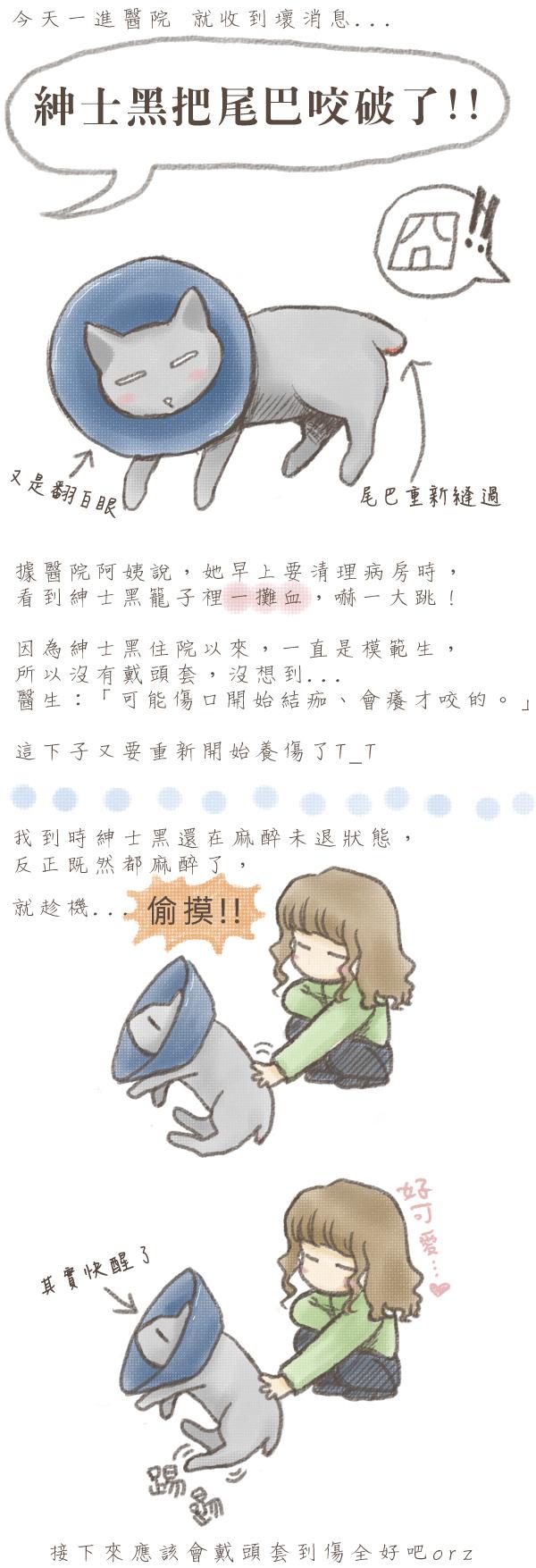 20110124_紳士黑.jpg