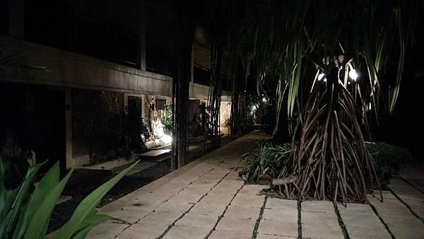 長灘島,蝴蝶2拍攝_256.jpg