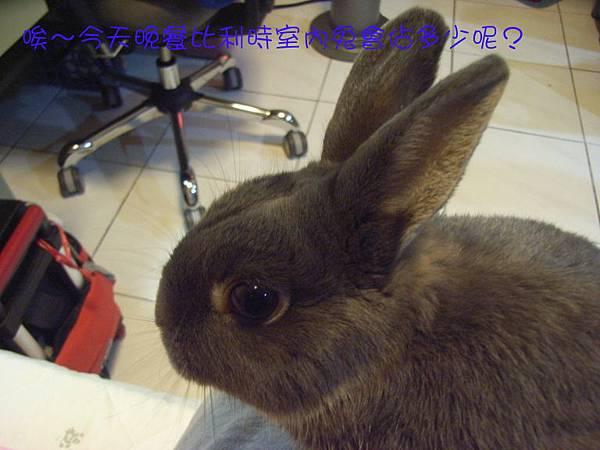 仙太郎2010春季近拍帥照(3)