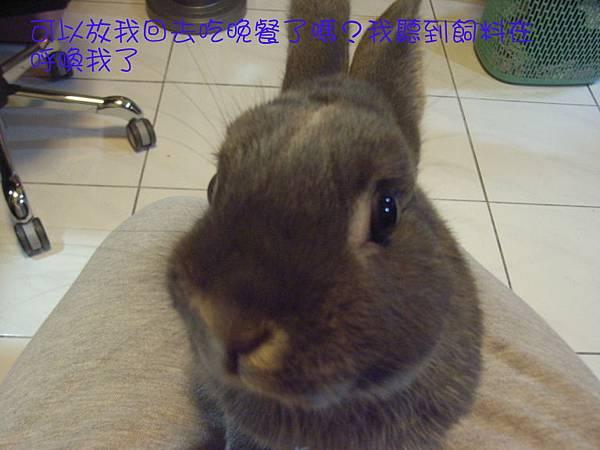 仙太郎2010春季近拍帥照(6)