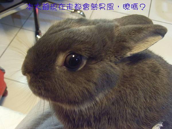 仙太郎2010春季近拍帥照(1)