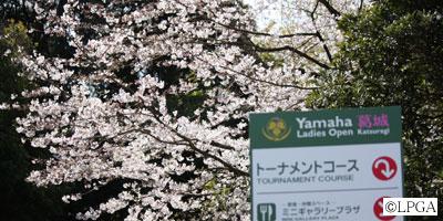 yamaha_090403_01.jpg