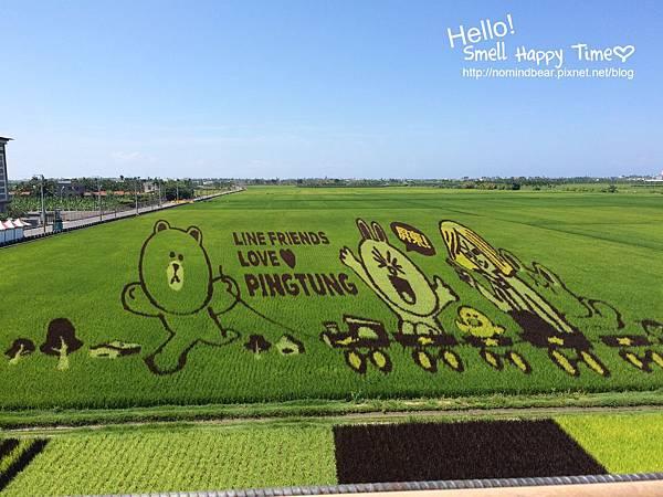2015屏東國際彩稻藝術節