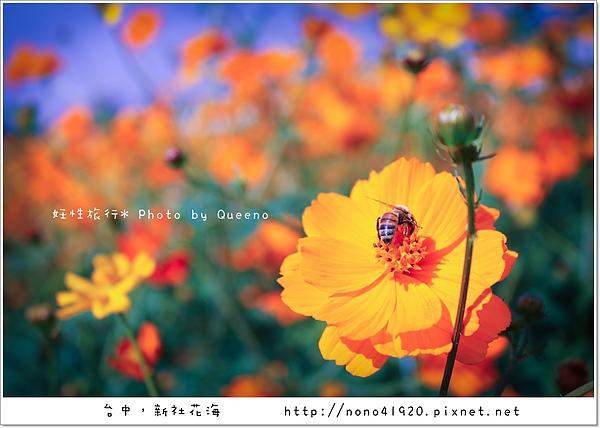 image 101-2.jpg