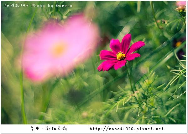 image 186-2.jpg