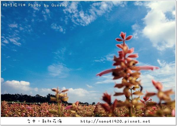 image 020-2.jpg
