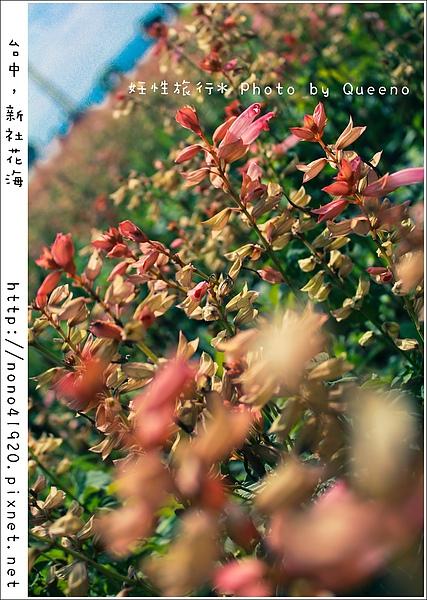 image 022-2.jpg