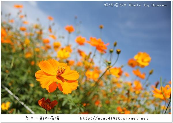 image 147.jpg