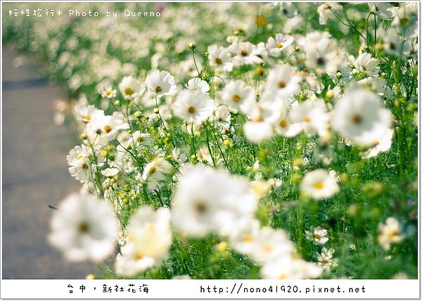 image 197-2.jpg