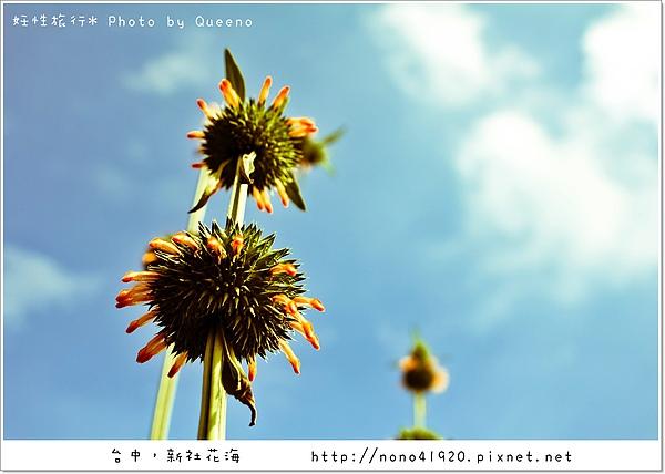 image 057-2.jpg