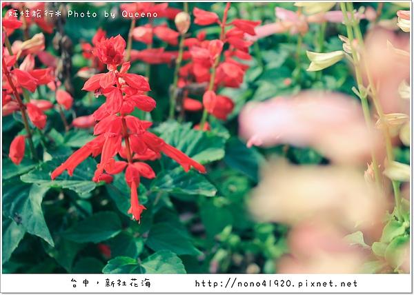 image 031-2.jpg