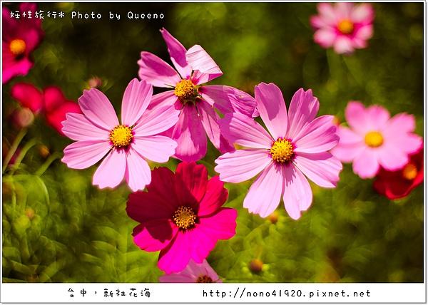 image 192-2.jpg