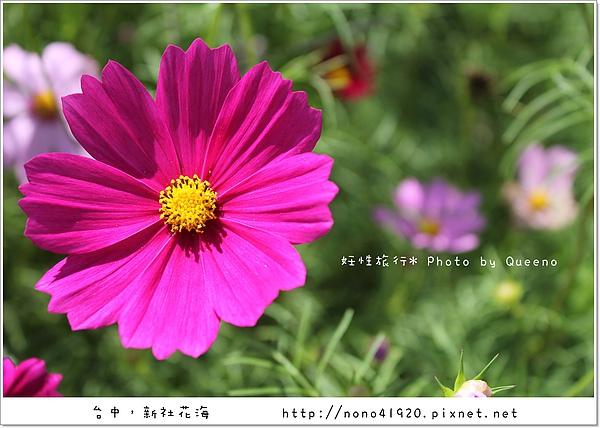 image 124.jpg