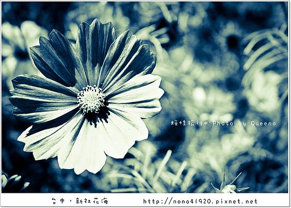 image 124-2.jpg