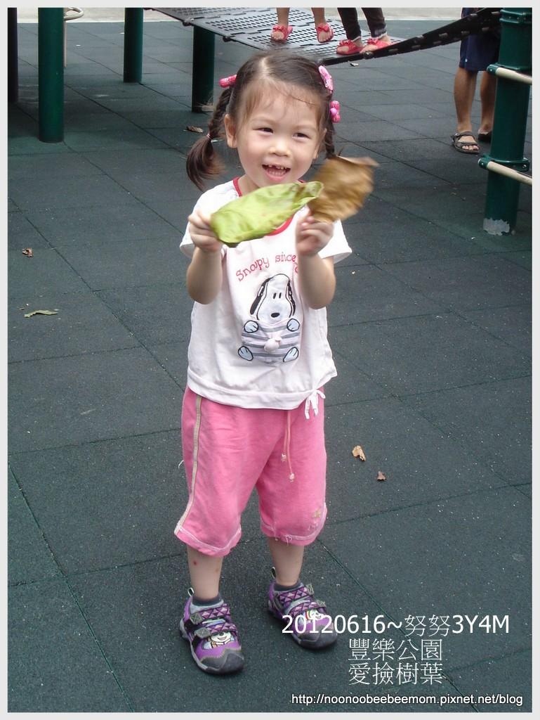 6-1010616豐樂公園5