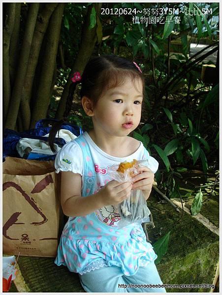 01-1010624植物園&迪卡儂