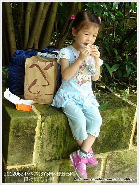 03-1010624植物園&迪卡儂2