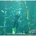 005-1 010919海生館4