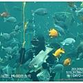 006-1 010919海生館5