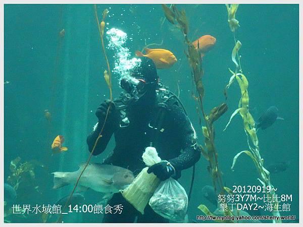007-1 010919海生館6
