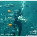 012-1 010919海生館11