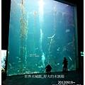 017-1 010919海生館16
