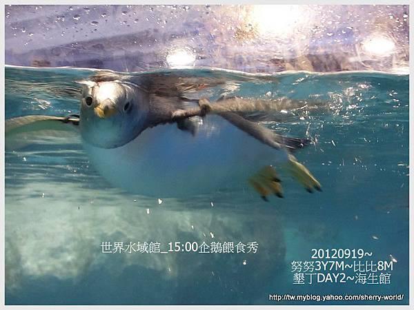 041-1 010919海生館40