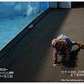 059-1 010919海生館58