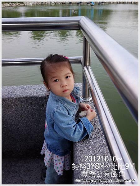 11-1011010豐樂公園10