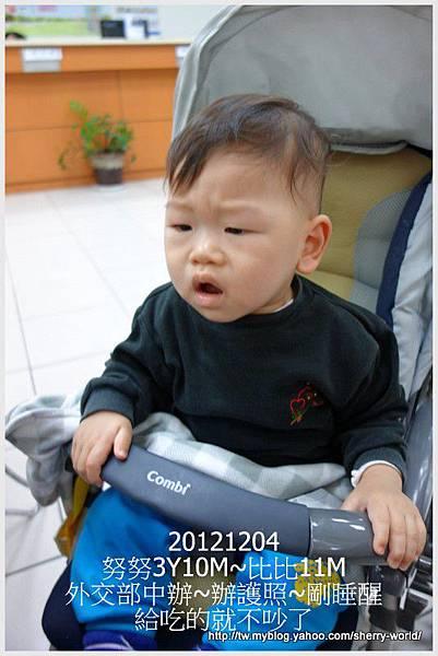 9-1011204拍照辦護照28