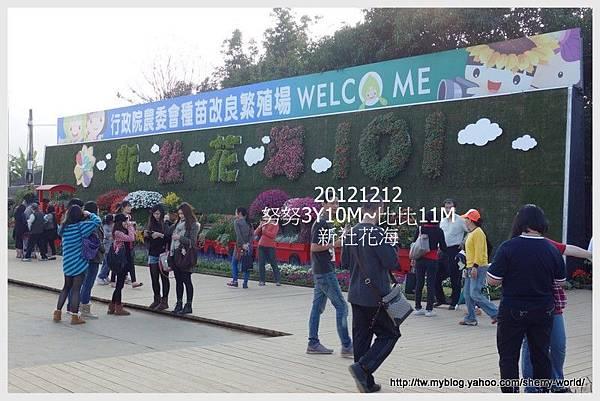 002-1011212新社花海