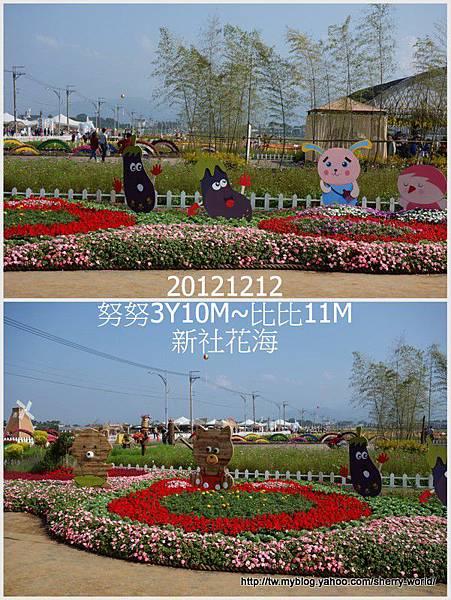 004-1011212新社花海2