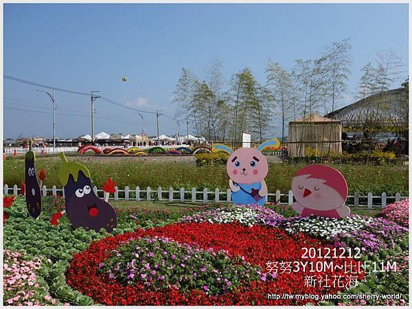 009-1011212新社花海4