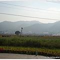 093-1011212新社花海88