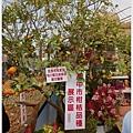 121-1011212新社花海116
