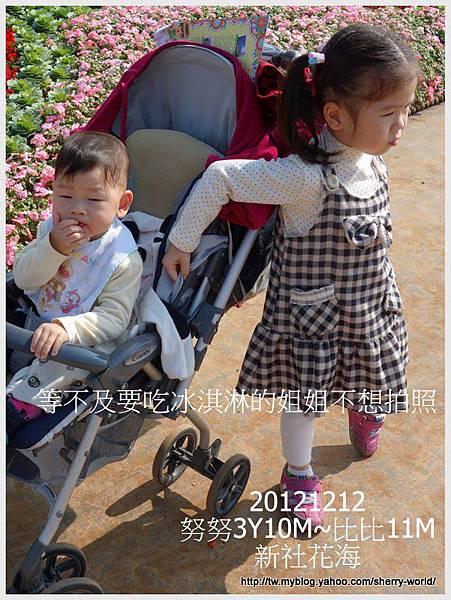 008-1011212新社花海3