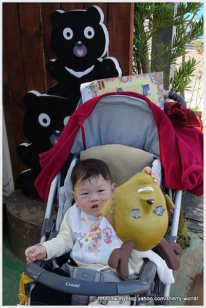 019-1011212新社花海14