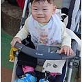020-1011212新社花海15