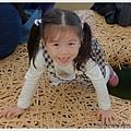 116-1011212新社花海111