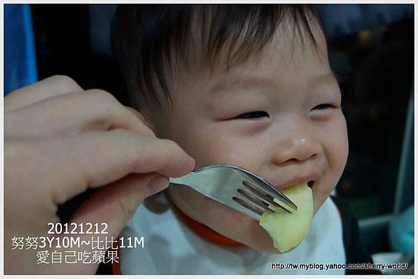 2-1011212新社花海137