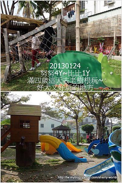 57-1020124老樹根&秋紅谷78