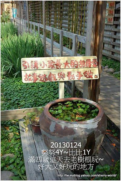 68-1020124老樹根&秋紅谷108