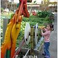 48-1020124老樹根&秋紅谷119