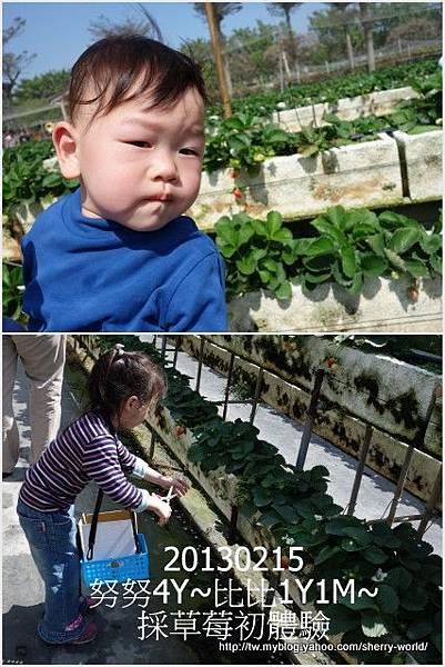 01-1020215採草莓