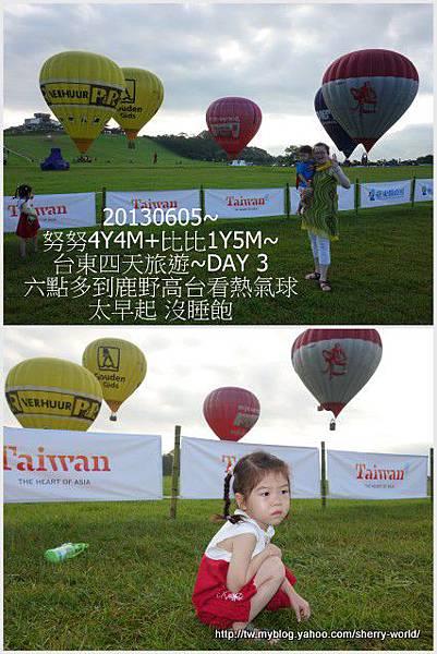02-1020605台東鹿野森活民宿_熱氣球_初鹿牧場1