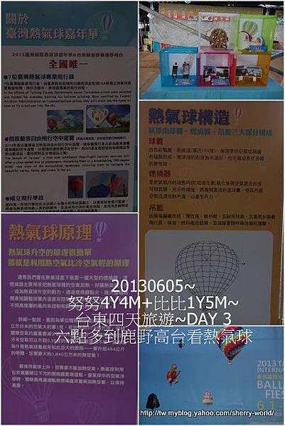 04-1020605台東鹿野森活民宿_熱氣球_初鹿牧場3