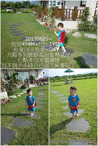 10-1020605台東鹿野森活民宿_熱氣球_初鹿牧場8