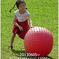 23-1020605台東鹿野森活民宿_熱氣球_初鹿牧場20