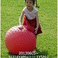 24-1020605台東鹿野森活民宿_熱氣球_初鹿牧場21