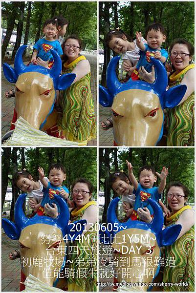 56-1020605台東鹿野森活民宿_熱氣球_初鹿牧場55